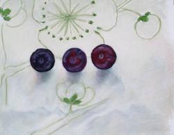 three plums.jpg