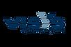 visys logo