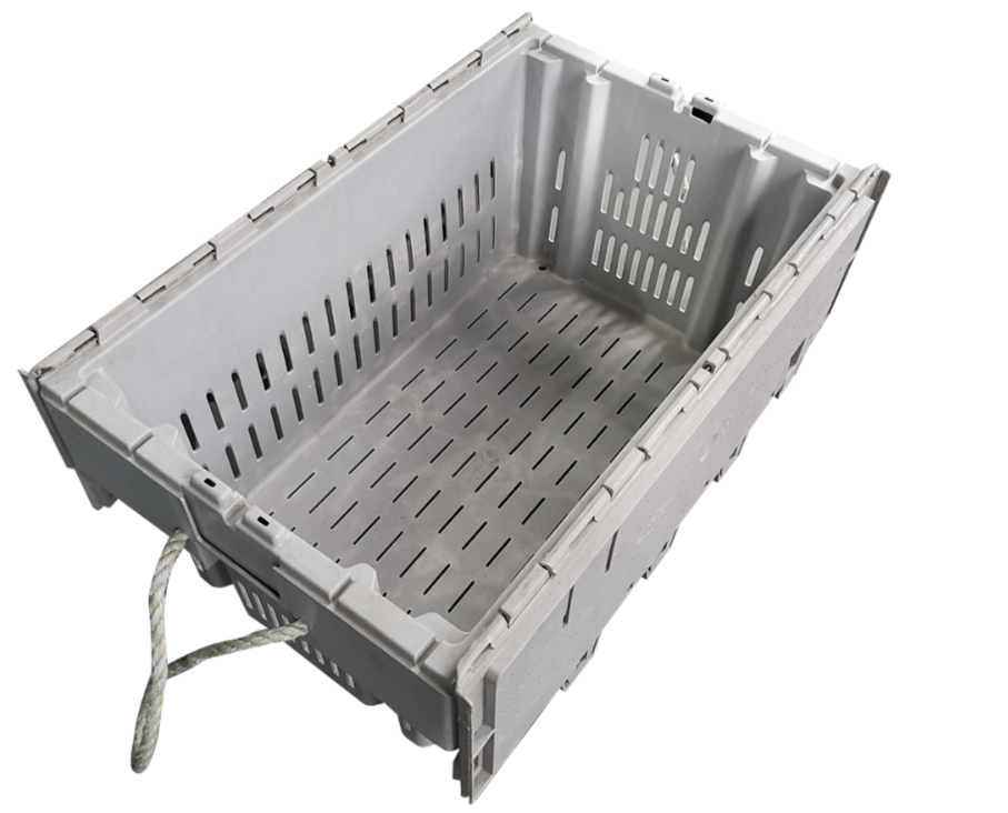 Lobster-Crate-2_edited_edited.png