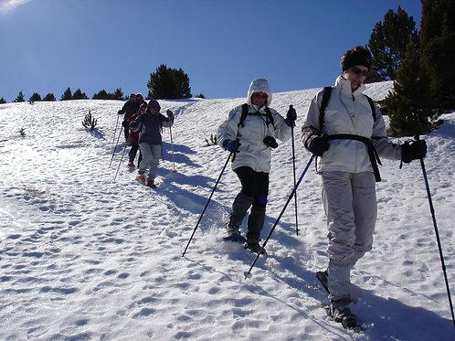 15 i 16 de febrer 2020: raquetes de neu amb guia en Andorra, coms de Jan i Segle