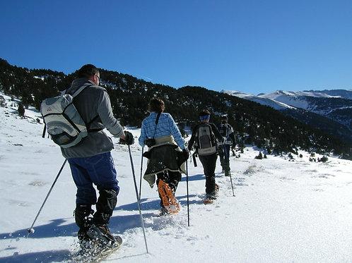 Tots els dies de l'hivern: sortida amb raquetes en Andorra de 3 hores