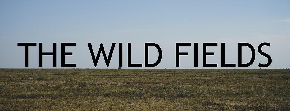 wild%20field_edited.jpg