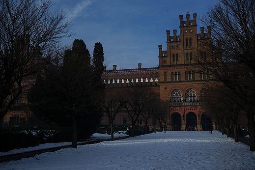 chernivtsi university.jpg