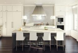 cn001_0013025_view-10-kitchen_300