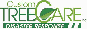 CTC Disaster Response Logo CMYK Final-pa