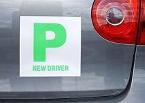 p-plate.jpg