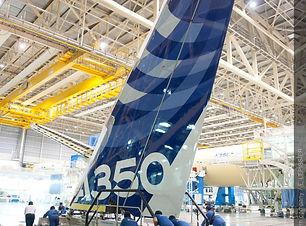 A350 MSN1 TAIL FITTING.jpg