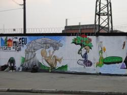 Guarulhos - Pintura dos Muros - Pimentas (95)