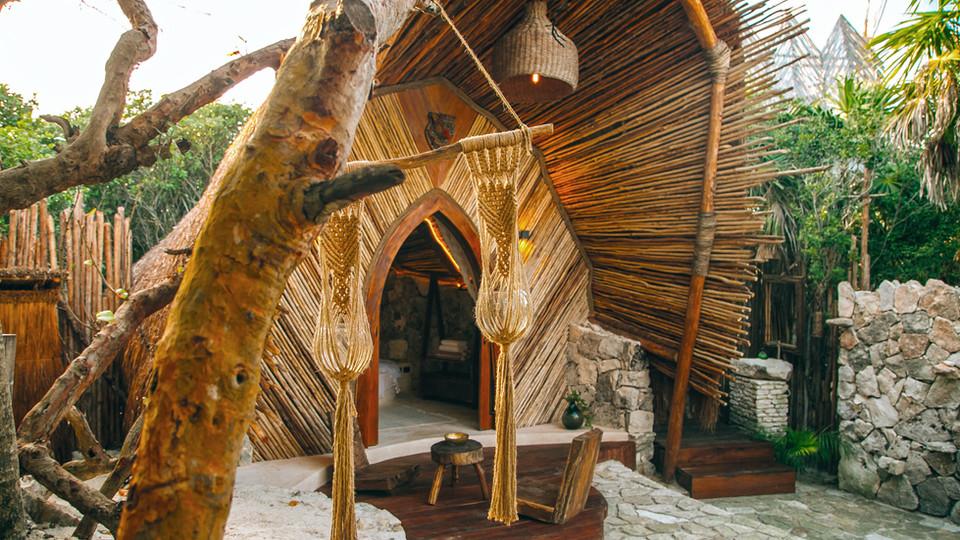 Rays of wood...
