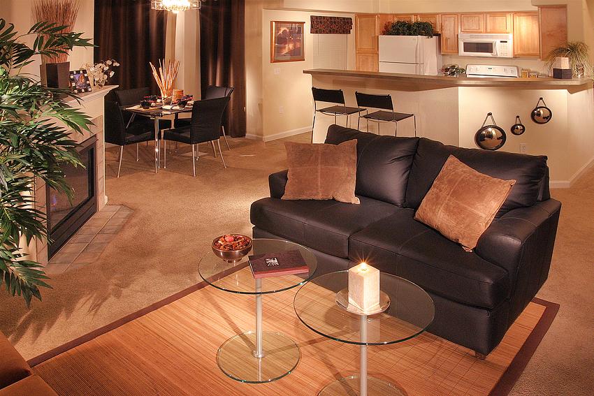 Apartment Living Room Interior 1