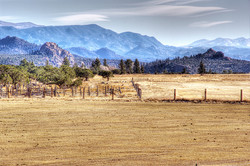 Old Horse Ranch & Misty Mountains