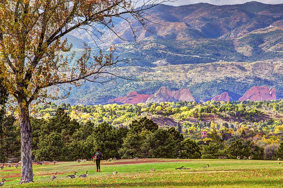 Cellgazer in Memorial Park, Colorado