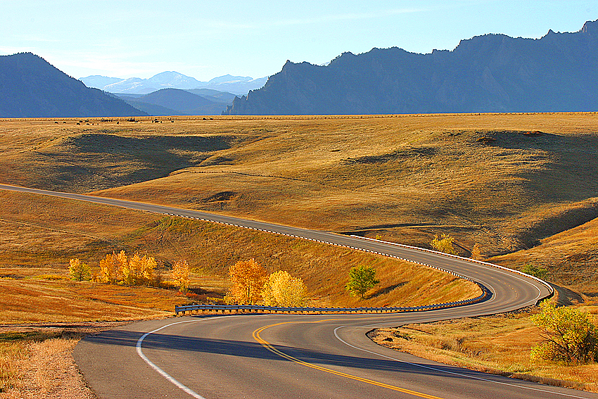 Winding Autumn Road, Colorado