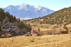 Winding Road to Buena Vista