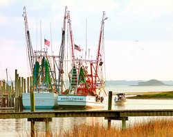 Charleston, SC Shrimp Boats