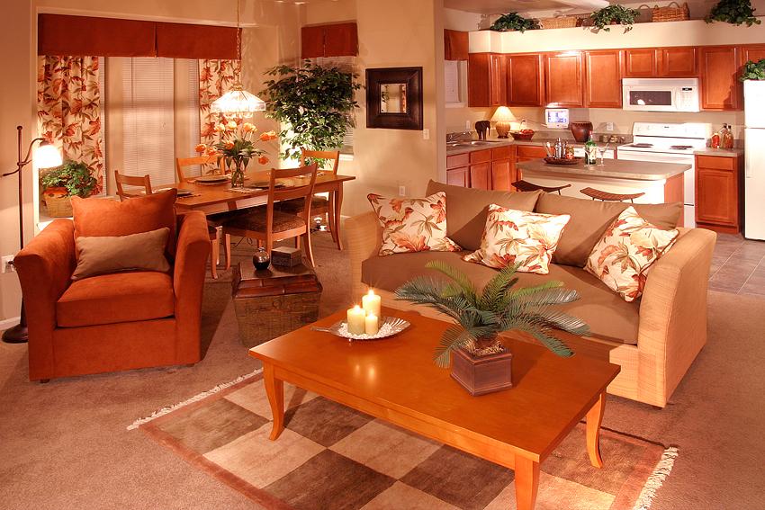 Apartment Living Room Interior 2