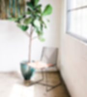 jen-dorsey-design-virtual-interior-design-sustainable-home-design
