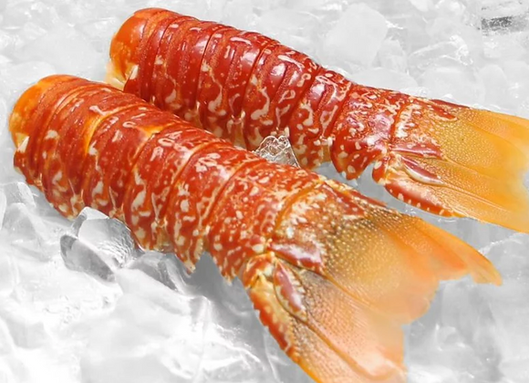 Lobster - South African Mini Tails