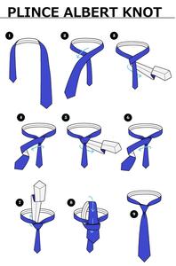 ネクタイの結び方。プリンス・アルバート・ノット。
