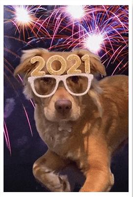 Jan0821 Maisy Glasses.png