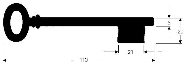 Chubb-Schlüssel I F110