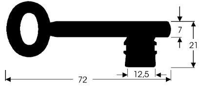 Chubb-Schlüssel I DE & CH