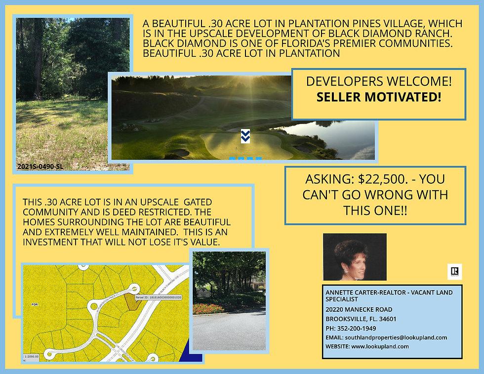 2021S-0490-SL MARVIN SCHAFFEL POSTCARD 7-18-21.jpeg