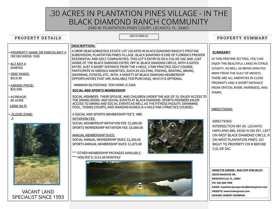 2021S-0490-SL MARVIN SCHAFFEL WEB  PAGE 7-18-21.jpeg