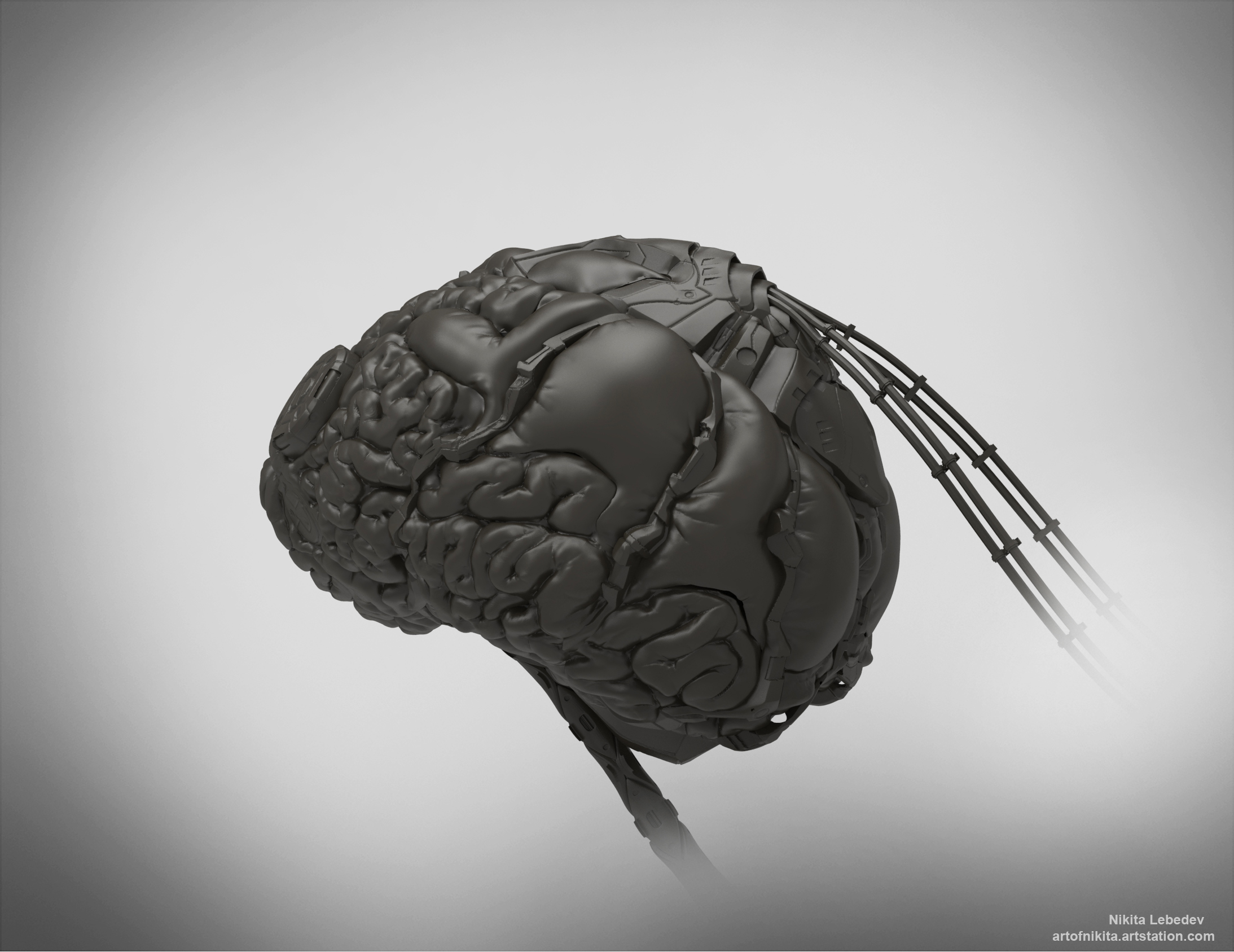 Cybernetic brain