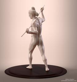Male figure anatomy study