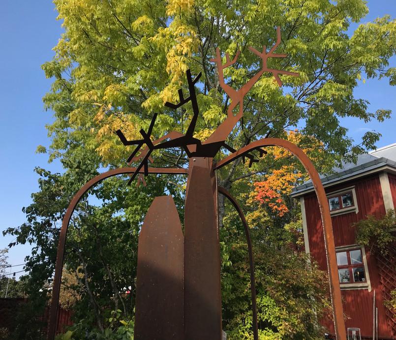 """Baobab the Tree"""