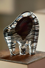 Almost a Zebra