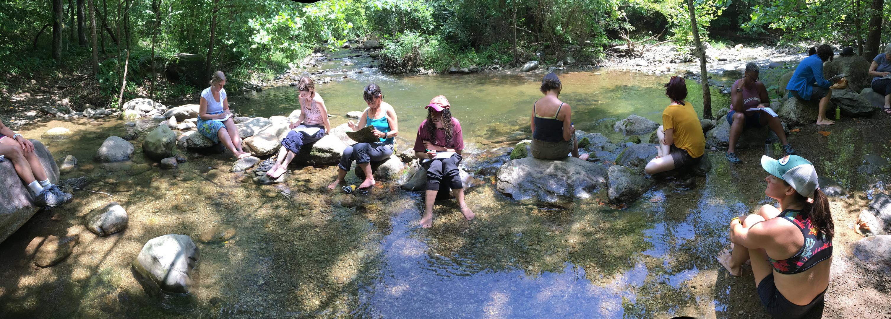 Eco-journaling