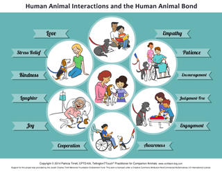 Animal Assisted Interactions and the Human Animal Bond
