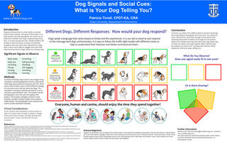Dog Signals and Social Cues: What Is Your Dog Telling You?