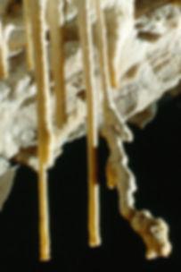 grotte de draye.jpg