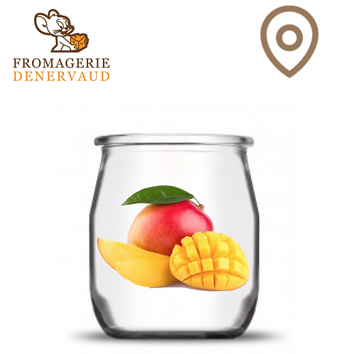 Yogourt - Mangue (2.90 + consigne 0.50) - 500g