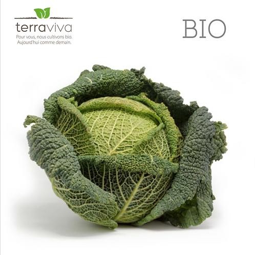 Chou frisé Bio - 1kg