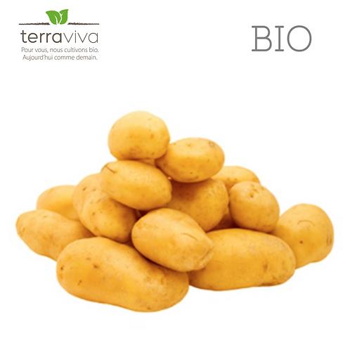Pomme de terre Challenger Bio - 1kg