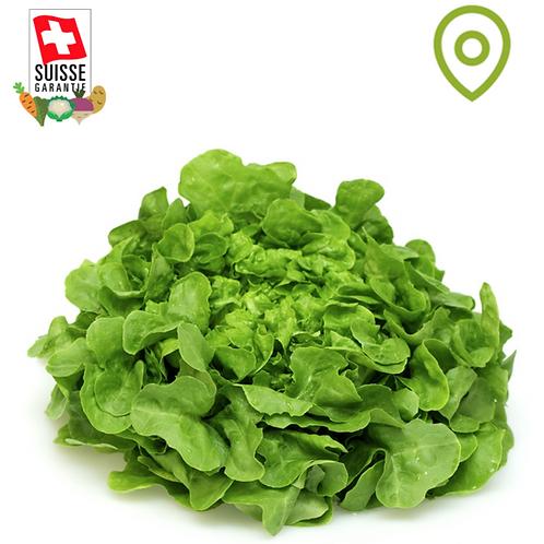 Salade Feuille de Chêne verte - 1pce