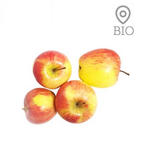 Pomme à croquer BIO ~ 2 kg