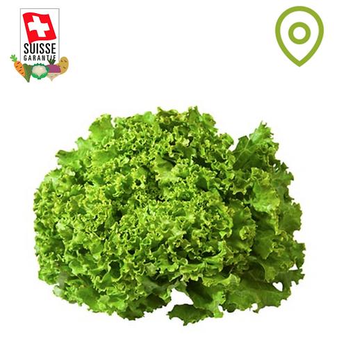 Salade Batavia- 1pce