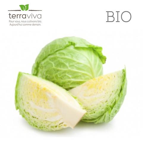 Chou blanc Bio - 1kg