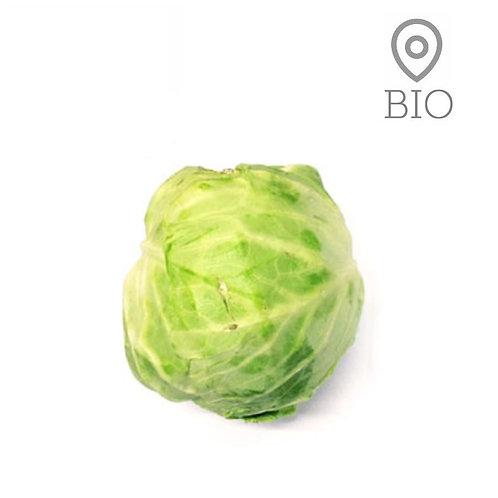 Chou blanc Bio ~ 1kg
