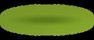 진녹색 그림자.png
