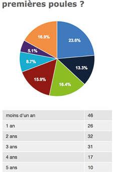 RTBF et le recensement ValueBugs des poules Bruxelloises