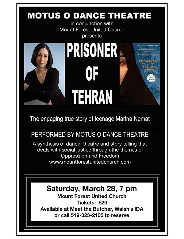 Prisioner of Tehran poster.3pages.jpg