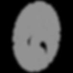 authentication image cobbler technologies no code