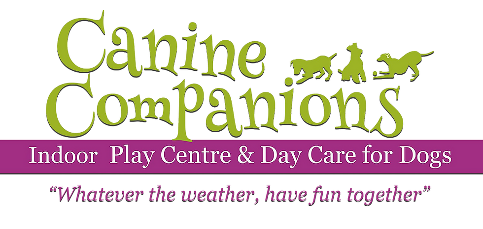 canine comp logo 2.png