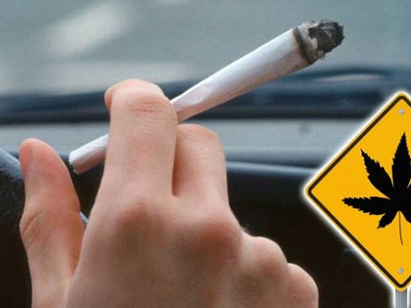 Have You Had Too Much Marijuana to Drive? Understanding the Legal Limit of Cannabis